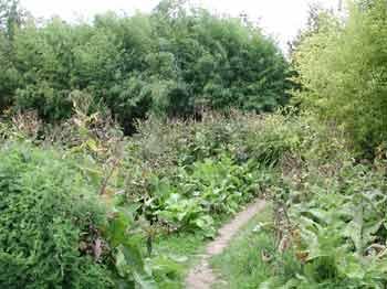 jardin en mouvement
